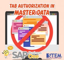 SAP Business One Tips Indonesia Tab Authorization in Master Data