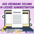 SAP Business One Tips Username Column in License Administration