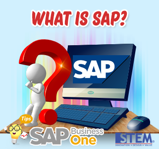 SAP Indonesia Apa itu SAP?