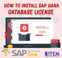 SAP Business One Indonesia Tips Install SAP Hana Database