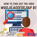 SAP Business One Indonesia Tips how to find out the user who is access sap