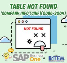 SAP Business One Tips Table Not Found