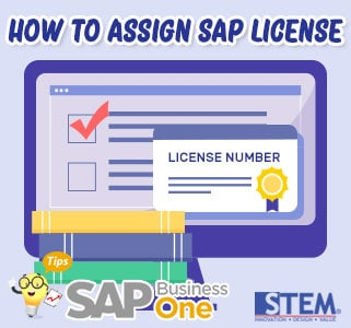 SAP Business One Tips How to Assign SAP License