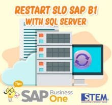 SAP Business One Tips Restart SLD with SQL Server
