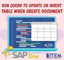 SAP Business One Tips Run Query to Update or Insert Table when Create Document
