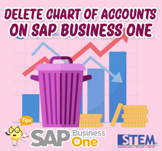 sap business one tips how to delete chars of accounts