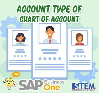 SAP Business One Tips Account Type of Chart of Account