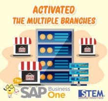 SAP Business One Tips Activated The Multiple Branches