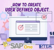 SAP Business One Tips How to Create User defined Object