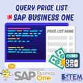 SAP Business One Tips Query Price List