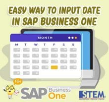 SAP Business One Tips Easy way to input date in sap b1