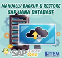 SAP Business One Tips Manually Backup Restore SAP Hana Database