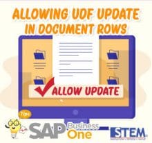 SAP Business One Tips Allow UDF Update in Document Row