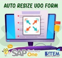 SAP Business One Tips Auto Resize UDO Form