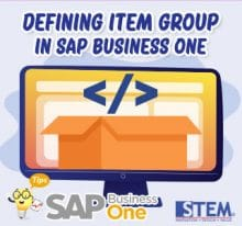 SAP Business One Defining Item Group