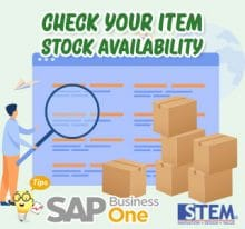 SAP Business OneTips Check Your Item Stock Availability