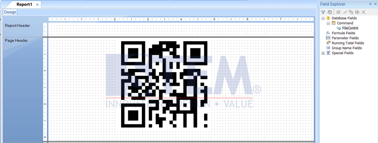 SAP Business One Tips - Display QR Code in Crystal Report