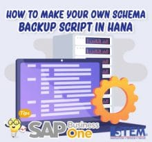 SAP Business One Tips How to make your own schema backup script in hana