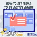 SAP Business One Tips How to set items to be active again