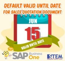 SAP Business One Tips Default Valid Until Date