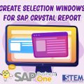 SAP Business One Tips Create Selection Criteria Windows