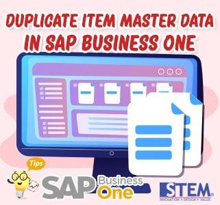 SAP Business One Tips Duplicate Item Master Data