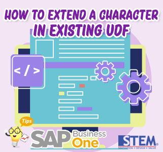 SAP B1 Tips Extend Character in Existing UDF
