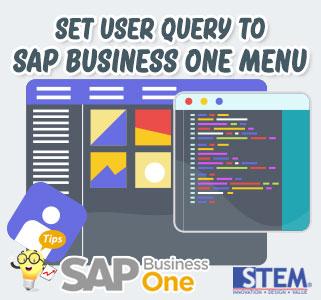 SAP B1 Tip Set User Query to SAP Menu